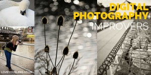 intermediate photography course