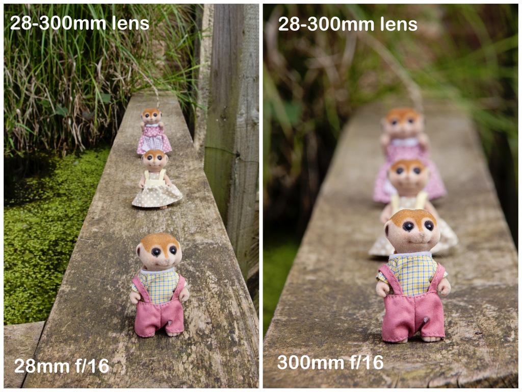 love-your-lens-focal-lengths