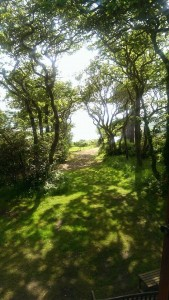 holiday-cottage-view