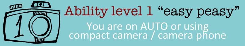 Ability level 1