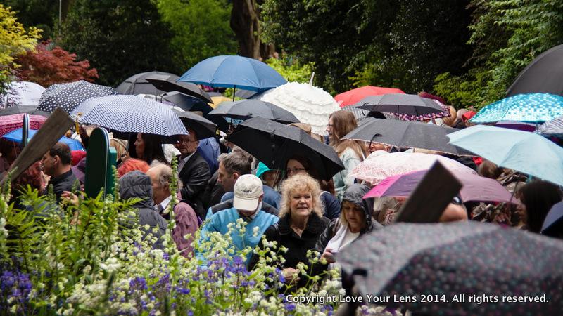 Chelsea-Flower-Show-rain
