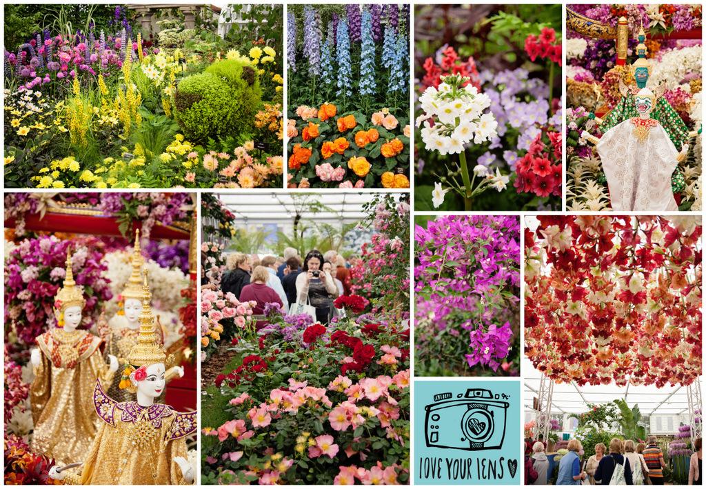 Chelsea-Flower-Show-Great-Pavillion