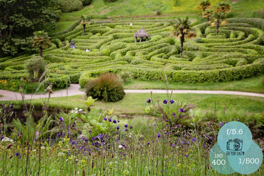 Glendurgan-Maze