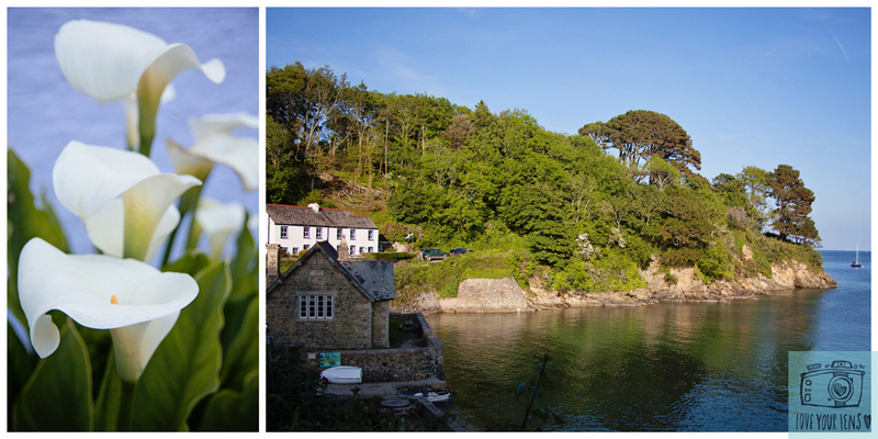 Durgan-National-Trust-Helford-River