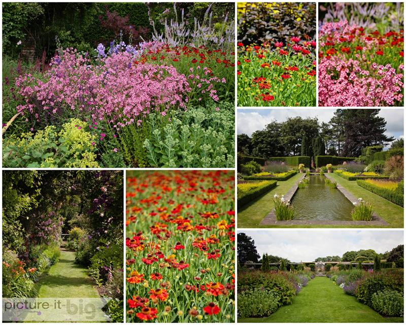Cogshall-Grange-Garden-Photography