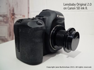 Canon camera with lensbaby