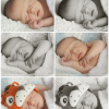 baby_photography_course