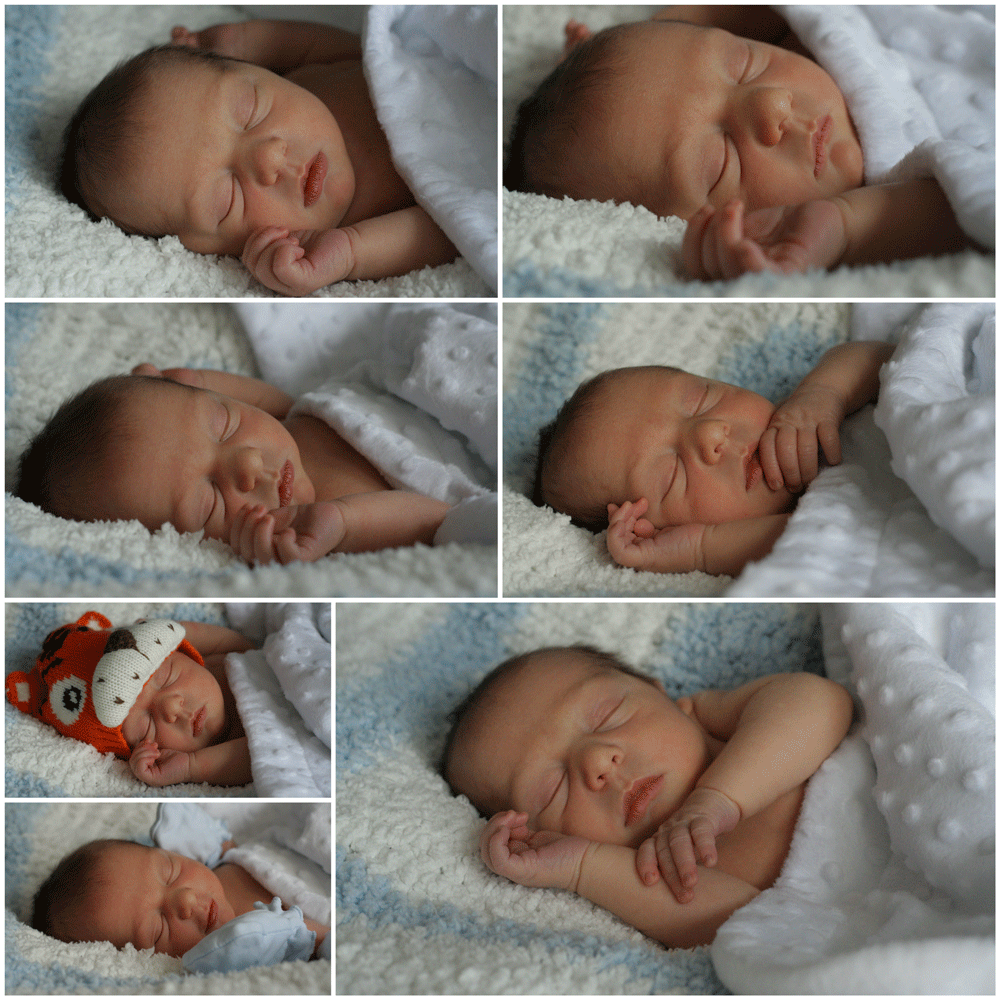 baby_photography