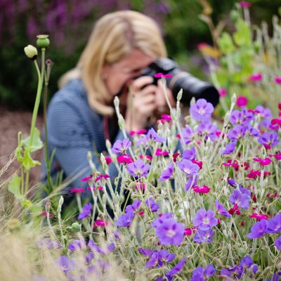 flower_photographer